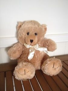 NEW Quality Teddy Bear Warwick Southern Downs Preview