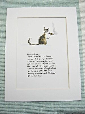 HAVANA BROWN CAT Mounted Print 9x7