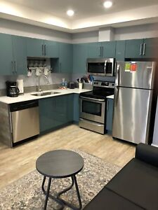 Furnished Stylish One Bedroom Apartment Downtown