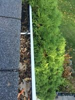 Gutter cleaning / Hedge trimming