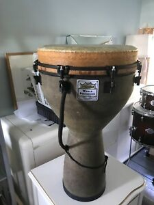 "14"" Remo Djembe"