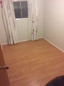 Room/rooms for rent