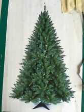Christmas Tree Bonnyrigg Fairfield Area Preview