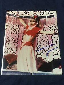 Barbara-Eden-I-Dream-of-Jeannie-Sexy-Signed-Autograph-Large-11x14-Photo