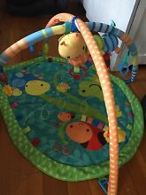 Baby play mat Southport Gold Coast City Preview