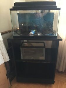 NEW PRICE - fish tanks and stand