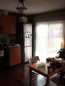 $1250 1 bedroom apartment in the private house (Thornhill)