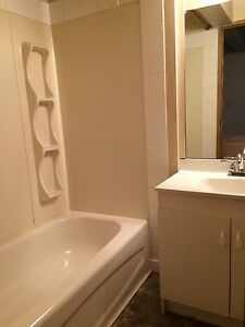Two bedroom bi-level basement available for rent at June 1st
