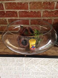 Fish bowl and accessories.
