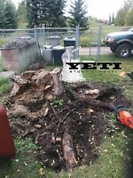 Stump Removal / Small Tree Removal