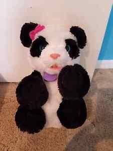 Fur real panda Somerville Mornington Peninsula Preview