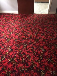 Carpet - Free
