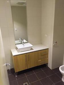 Share room with vietnamese guy Strathfield Strathfield Area Preview