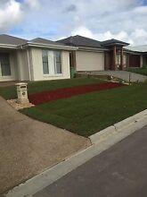 GrassMan/turf brisbane/goldcoast Upper Mount Gravatt Brisbane South East Preview