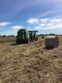 Round hay bales, cheap price
