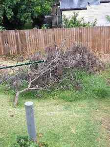 Garden waste removal Speers Point Lake Macquarie Area Preview