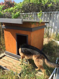 Huge Custom Dog Kennel Melville Melville Area Preview