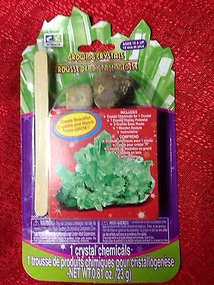 GREEN CREATIVE KIDS SCIENCE CRYSTAL GROWING KIT AGES 10+