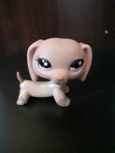 figurine petshop  original chien dog teckel daschund 932   pet shop
