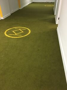 Carpet - great condition. Sydney City Inner Sydney Preview