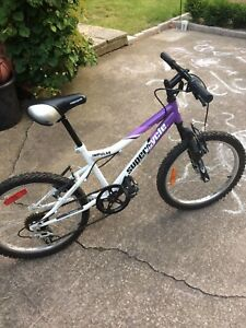 Girls 5-speed 19 inch bike