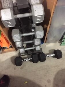 adjustable northen lights bench and dumbells