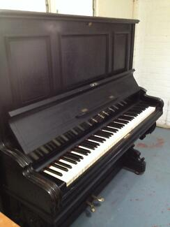 GERMAN LIPP AND SOHN PIANO IN TUNE FREE DELIVERY GREAT CONDITION White Gum Valley Fremantle Area Preview