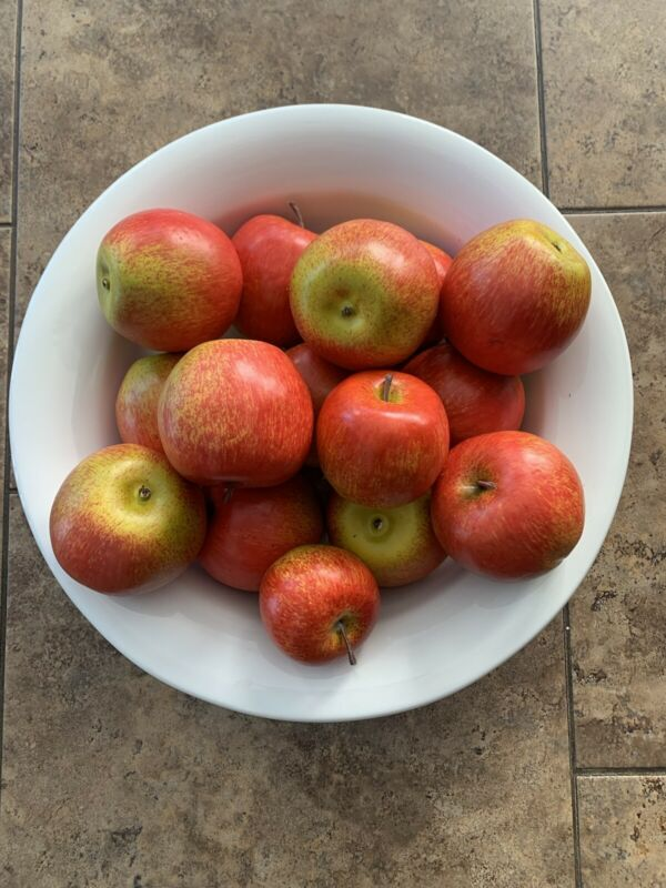 FABULOUS SET OF  15 VERY REALISTIC LOOKING APPLES!! GREAT QUALITY!