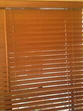Timber Venetian Blinds Parrearra Maroochydore Area Preview