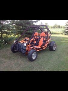 Go cart 2011