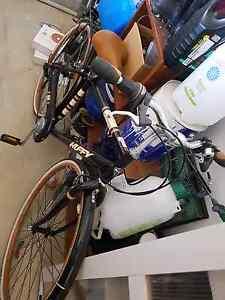 Men's mountain bike Camden Camden Area Preview