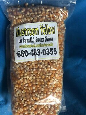 - 4 Bags of Home Grown Mushroom Yellow Popcorn - Law Farms LLC