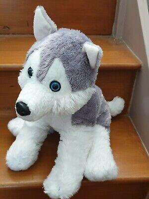 Husky Soft Toy Plush Husky lot 2