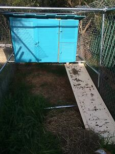 Chicken hutch and ramp Picton Wollondilly Area Preview