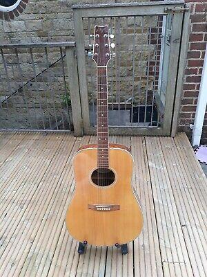 Brunswick Jumbo Acoustic Guitar