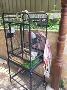 Galah bird with cage Bardwell Park Rockdale Area Preview