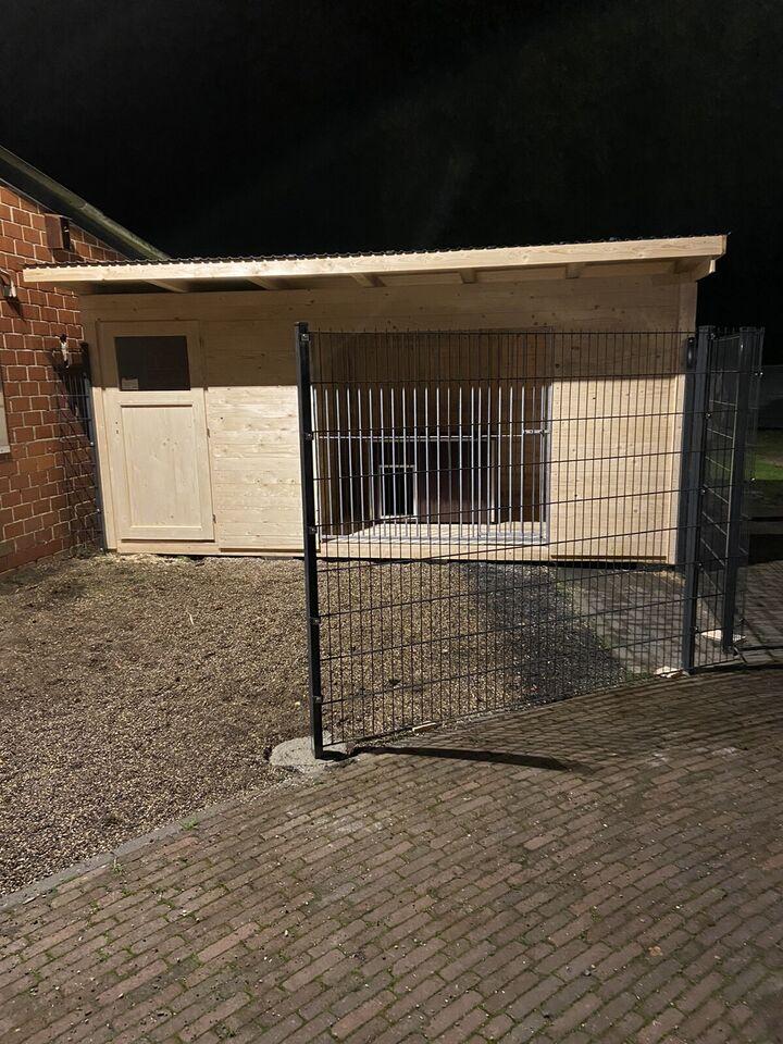 Hundezwinger nach Maß in Nordrhein-Westfalen - Halle (Westfalen)