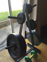 80 kg Weight plates and weight stand Woodbine Campbelltown Area Preview