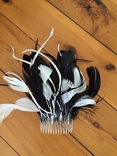 Black and White. Feathered headpiece secured by comb - great for races Phegans Bay Gosford Area Preview