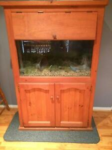 Fish tank setup Cranbourne East Casey Area Preview