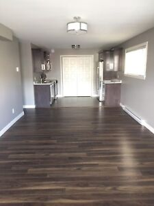 Above ground, 2 bedroom, open concept apartment in Southlands