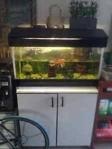 Fish tank with stand Merrylands Parramatta Area Preview