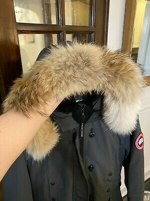 Canada Goose Womens Kensington Parka S Small Graphite Great Condition