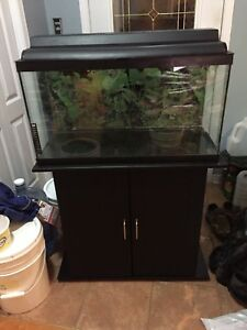 30 gallons