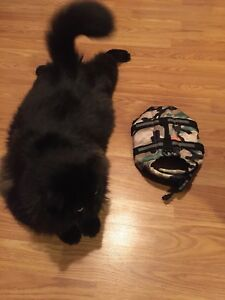 Pet life jacket size small , too small for my cat