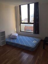 Second room in Cbd for rent Haymarket Inner Sydney Preview