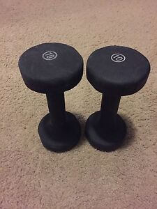 TWO 10lbs WEIGHTS
