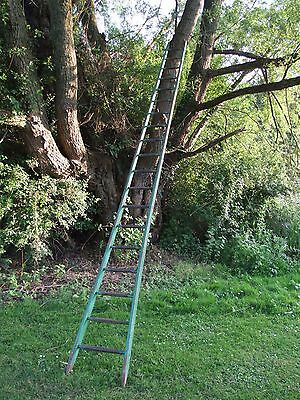 Barn Orchard Tree Arboretum old ladder antique vintage 4.55m
