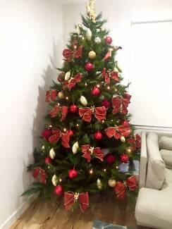 Canterbury Pine Christmas Tree - Excellent condition