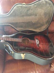 Washburn guitar and case